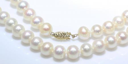 """17.5""""Freshwater Pearl Strand 14k Yellow Gold Clasp"""