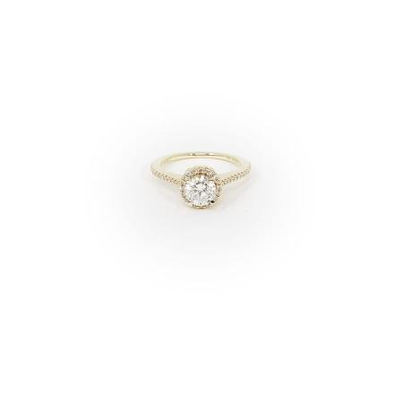 Round Halo Yellow Gold Engagement Ring