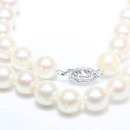 16'' Cultured 8.50mm Pearls with 14k White Gold Clasp