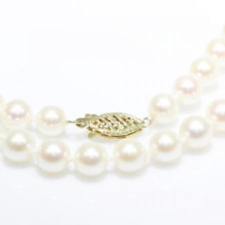 Cultured Pearl Strand with 14k Yellow Gold Clasp